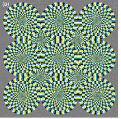 El cerebro ve ilusiones ópticas como movimientos reales 100309b